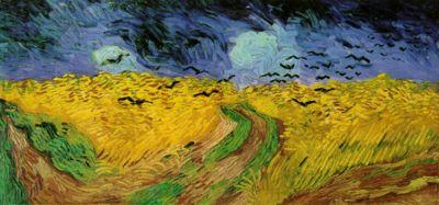 Campo di grano concorvi