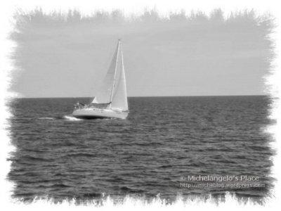2008_sailing-1.jpg